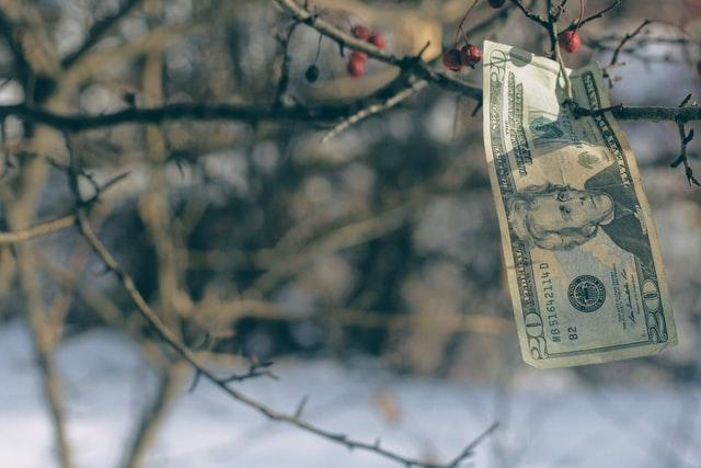 Cómo invertir en bolsa y sobrevivir